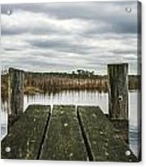 Clear View  Acrylic Print by Steven  Taylor