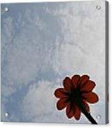 Clearing Skies Acrylic Print