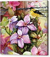 Clematis Vine And Goldfinch Acrylic Print