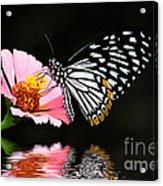 Cliche Acrylic Print