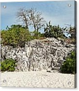 Cliff Stairs 1 Acrylic Print