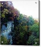Rock Cliff With Trees Acrylic Print