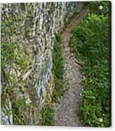 Cliffside Path Acrylic Print