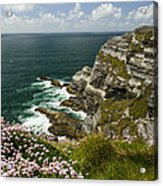 Cliffs Of Kerry Ireland Acrylic Print by Dick Wood