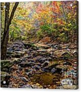 Clifty Creek In Hdr Acrylic Print by Paul Mashburn