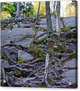 Climbing The Rocks Of Bald Mountain Acrylic Print