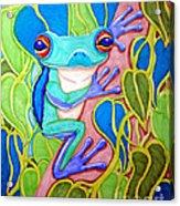 Climbing Tree Frog Acrylic Print