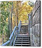 Climing Into Autumn Acrylic Print