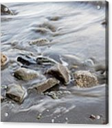 Clinging To The Shore Acrylic Print