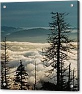 Clingman's Dome Sea Of Clouds - Smoky Mountains Acrylic Print