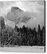 Cloaked In A Snow Storm - Monochrome Acrylic Print