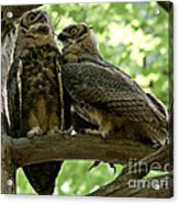 Close As Brothers Acrylic Print