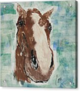 Close Up Acrylic Print
