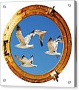 Close-up Of A Boat Closed Porthole With Flying Seagull On The White Background Acrylic Print