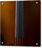 Close Up Of Cello Acrylic Print