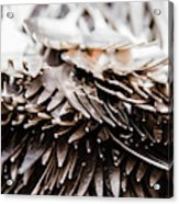Close Up Of Heap Of Silver Forks Acrylic Print