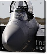 Close-up View Of A F-15c Eagle Acrylic Print