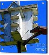 Closer Look At The Birdhouse Acrylic Print