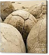 Closeup Of Famous Spherical Moeraki Boulders Nz Acrylic Print
