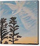Cloud Angel In Acryics Acrylic Print