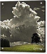 Cloud No.9 Acrylic Print