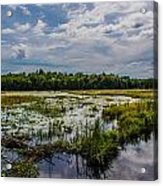 Cloud Reflection In Maine Marsh Acrylic Print by Jason Brow
