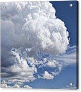 Cloud Study 114 Acrylic Print