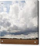Clouds Abound Acrylic Print