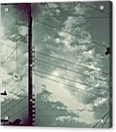 Clouds And Power Lines Acrylic Print