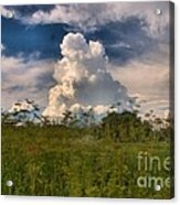 Clouds In A Field Acrylic Print