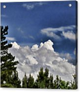 Clouds Like Mountains Behind The Pines Acrylic Print