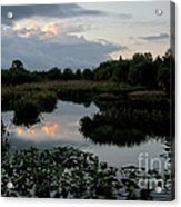 Clouds Over Green Cay Wetlands Acrylic Print by Mark Newman