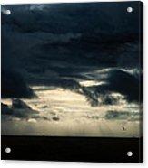 Clouds Sunlight And Seagulls Acrylic Print by Hakon Soreide