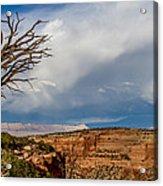 Cloudy Sky Acrylic Print