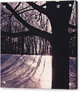 Clove Lakes Park In Winter Acrylic Print