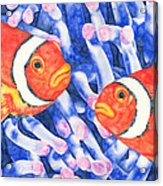 Clownfish Couple Acrylic Print