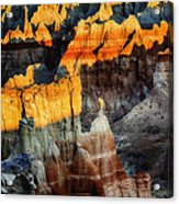 Coal Mine Canyon Aglow Acrylic Print