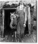 Coal Miner & Mule 1940 Acrylic Print