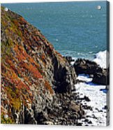 Coast Acrylic Print