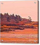 Coastal Bay At Low Tide Acrylic Print