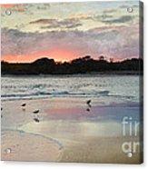 Coastal Beauty Acrylic Print