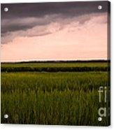Coastal Carolina Sunrise Acrylic Print