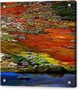 Coastal Colors  Acrylic Print