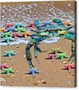 Coastal Crab Collection Acrylic Print