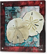 Coastal Decorative Shell Art Original Painting Sand Dollars Asian Influence I By Megan Duncanson Acrylic Print