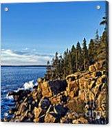 Coastal Maine Landscape. Acrylic Print