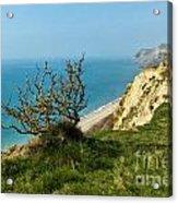 Coastal Path - West Bay To Eype  Acrylic Print