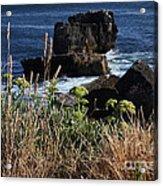 Coastal View From Cascais  Acrylic Print