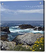 Coastline And Flowers In California's Point Lobos State Natural Reserve Acrylic Print by Bruce Gourley