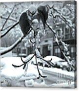 Coat Of Ice - Winter In New York Acrylic Print